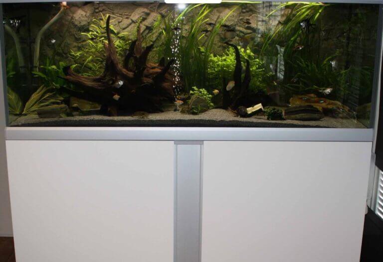 gewicht aquarium