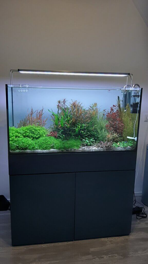 aquarium kopen