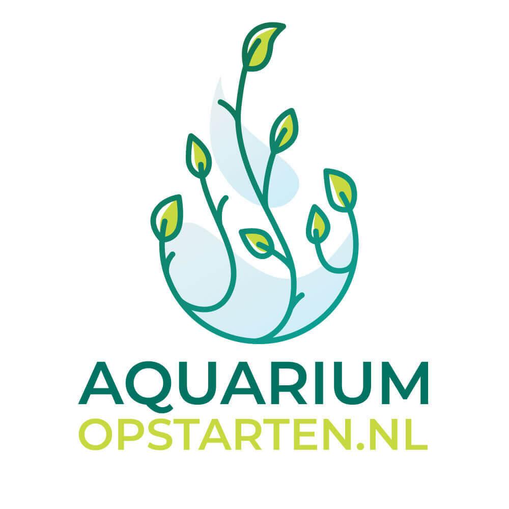aquarium opstarten en beginnen en ook aquascape