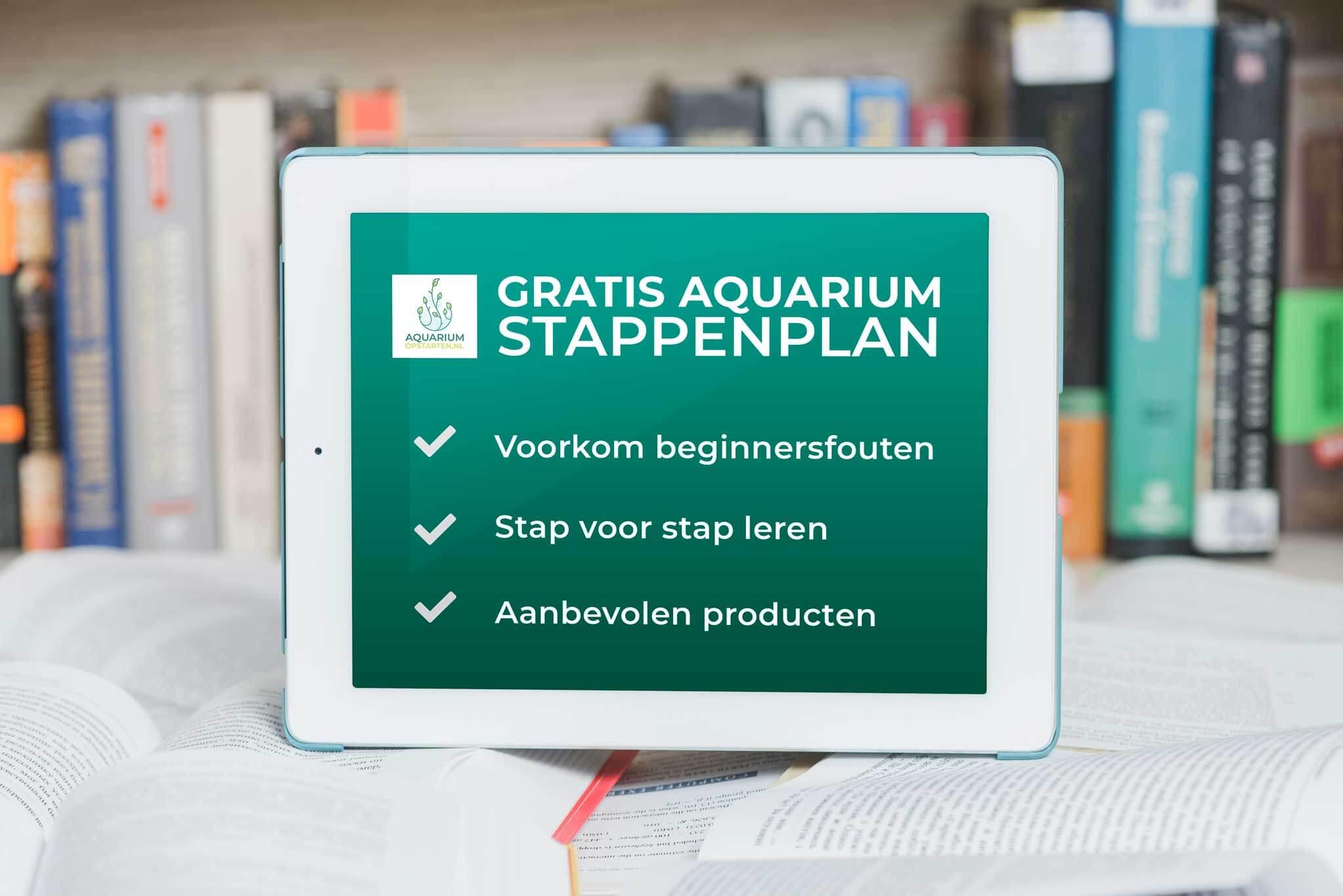 aquarium opstarten stappenplan, makkelijk je aquarium beginnen