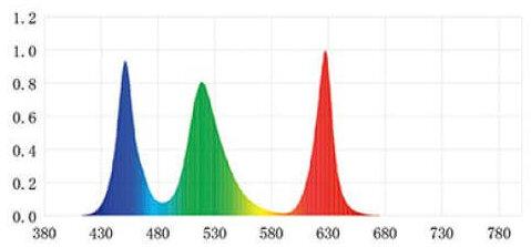 Spectrum aquascape